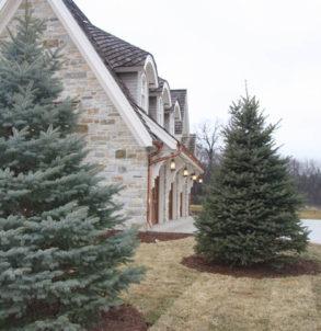 Custom Renovation Stone and Trees